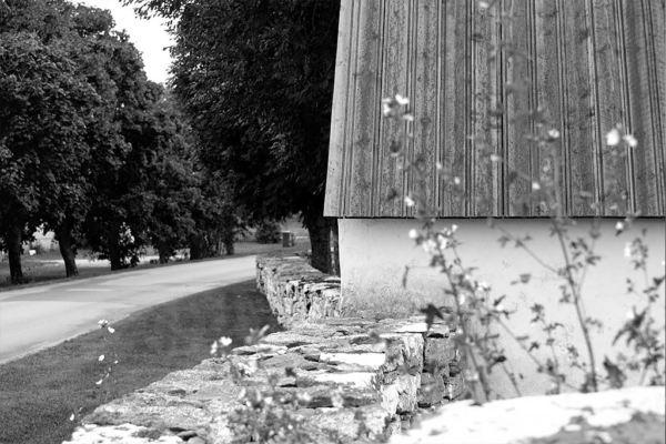 Sommaren 2016 Gotland